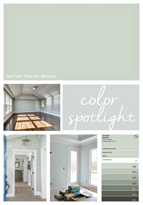 paint color sherwin williams sea sherwin williams sea salt color spotlight
