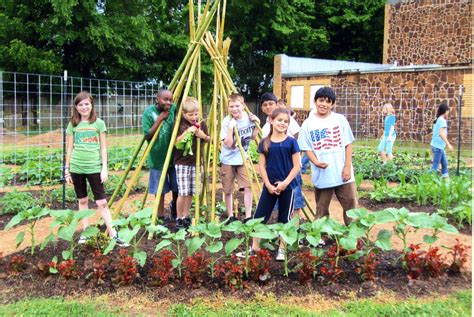 School Vegetable Gardens Kwb In At Schools Keep Whitehouse Beautiful