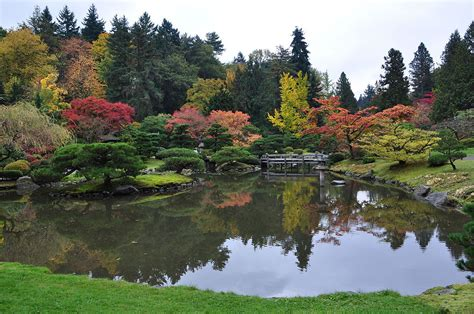 Seattle Botanical Gardens Seattle Japanese Garden