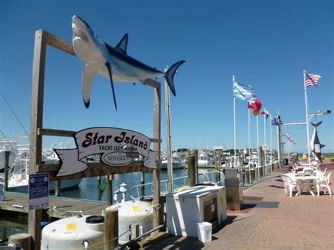 fishing boat yacht club star island yacht club and marina charter boats montauk