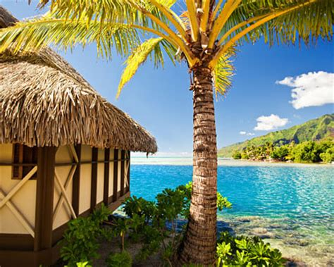 vacation packages to the caribbean aruba vacation