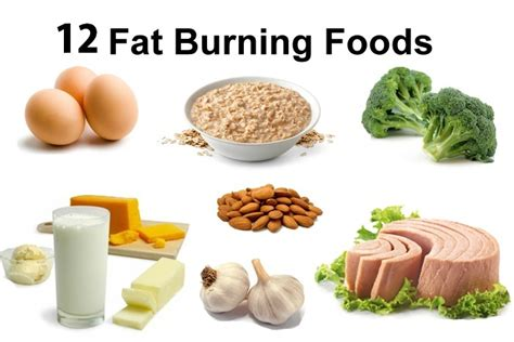 Burning Foods by 12 Best Burning Foods To Lose Weight And Stay Healthy