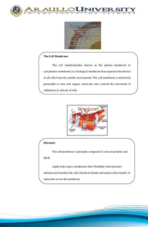 biology lesson plan template biology lesson plans high school pdf chapter 18 viruses