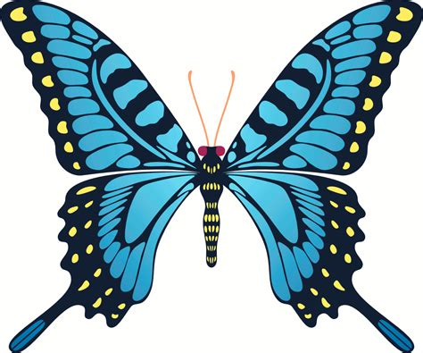 Images Of Animated Butterflies Animated Butterfly Flying Clipart Best