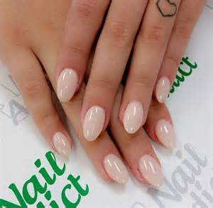1000 ideas about rounded nails on pinterest nails
