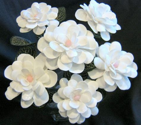 six white slipper shell seashell crafts flowers ocean blooms now