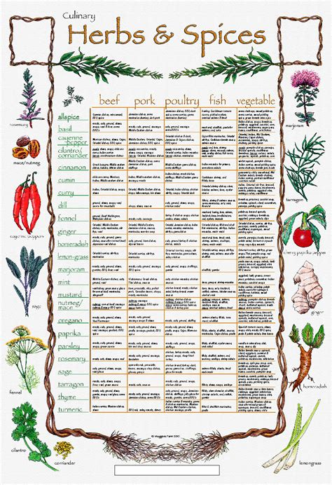spice herb kitchen chart by amalgamarts on etsy the creative quot palate quot culinary herb n spice chart