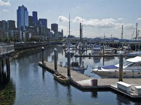 boat marina seattle seattle and marina along waterfront picture of