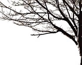 tree silhouette by avidwriter on deviantart