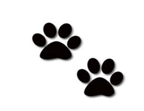 puppy paw print paw prints pictures clipart best