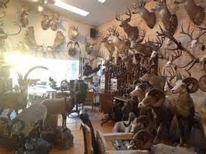 jim shockey s trophy room a can to someday