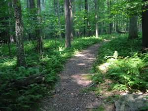 Hiking Trails Hiking Trails Beautiful Scenery Photography