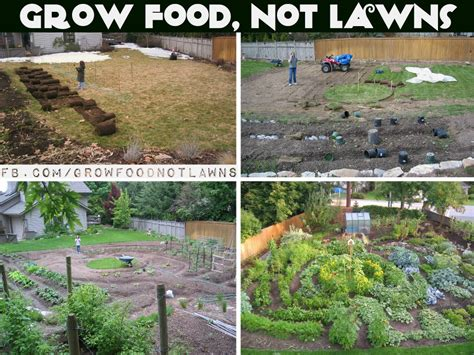 Click And Grow permaculture