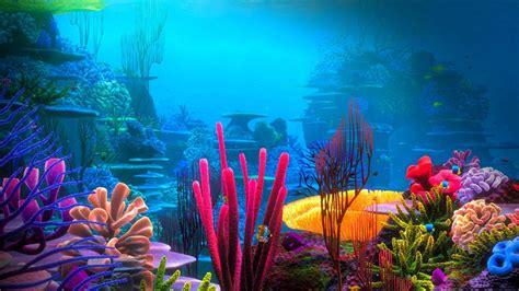 Beautiful Coral Reefs Wallpaper