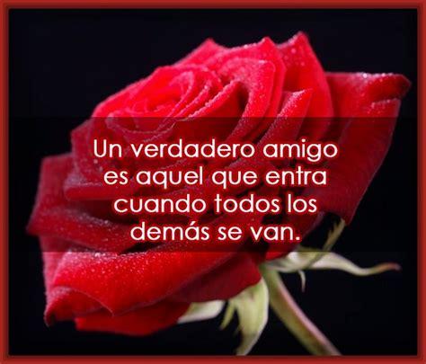 imagenes de rosas moradas con frases imagenes bonitas de rosas con frases de amor archivos