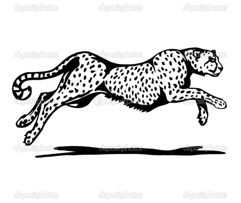 running cheetah coloring page free printable coloring pages cheetah print coloring pages gianfreda net