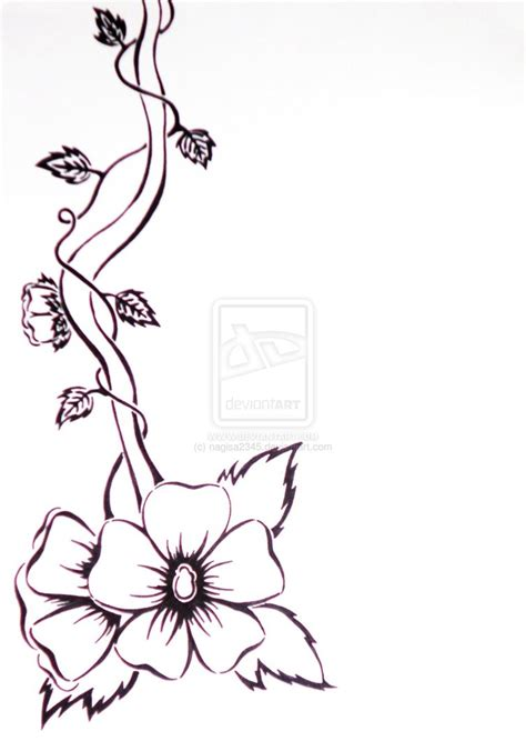 Drawing Vines by Flowers And Vines Drawing Clipart Best
