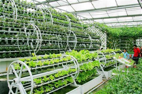 Vertical Garden Barrel - backyard aquaponics aqua botanical