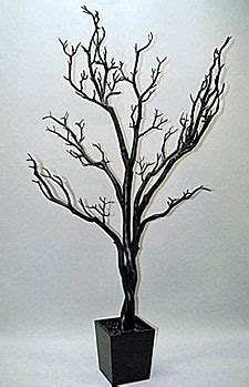 check out the deal on 4 foot black tree in decorative pot