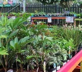 Garden Bandon by Bandon Co Op Retail Gallery