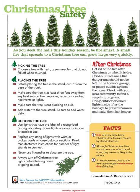 tree light safety bermuda rescue safety tips bernews