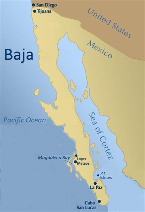 map of mexico baja baja mexico kayak whales responsible adventure