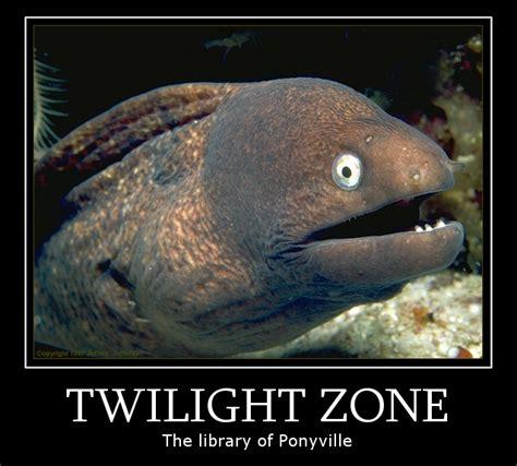 Bad Joke Eel Meme - image 437459 bad joke eel know your meme