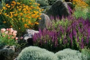 drought tolerant flowering shrubs gardenwright drought tolerant cottage gardens