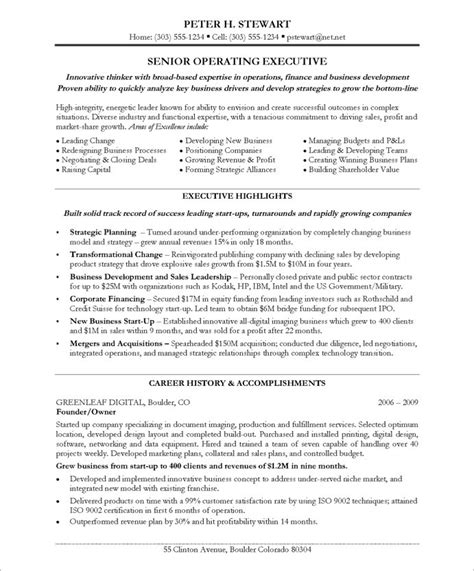 Best Resume Highlights by Ceo Coo Free Resume Samples Blue Sky Resumes