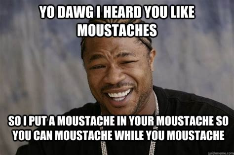 Meme Moustache - yo dawg i heard you like moustaches so i put a moustache