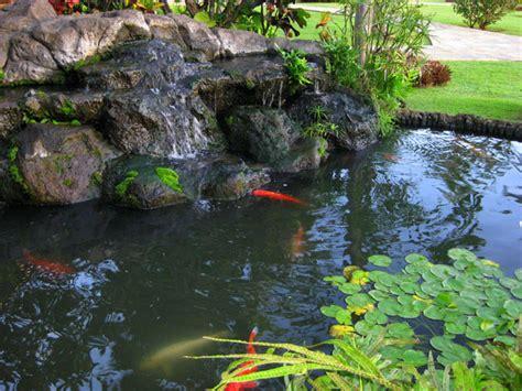 koi pond waterfalls outdoortheme com