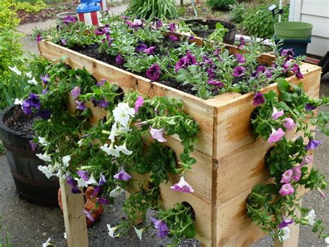 Inexpensive Planter Boxes by An Inexpensive Planter Box