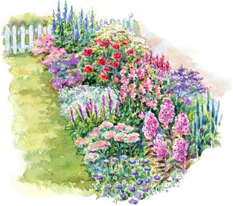 Cut Flower Garden Plan The Highest Quality Best Customer Service Fastest Delivery