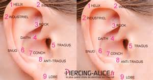piercing oreille le plus r 233 pandu des piercings