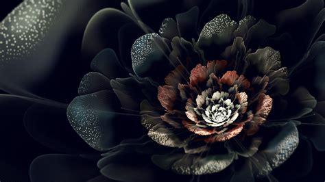 wallpaper schwarz grün die 77 besten schwarze lila hintergrundbilder