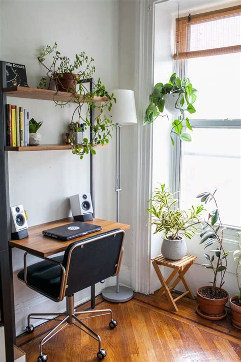 Best Office Desk Plants 25 Best Ideas About Desk Plant On Pinterest Desk Apartment Plants And Indoor Plants Low Light