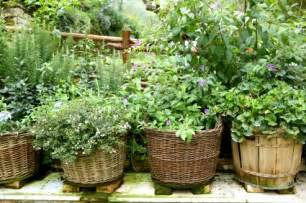 herb garden ideas woodworking plans for vertical herb garden diy woodworking projects