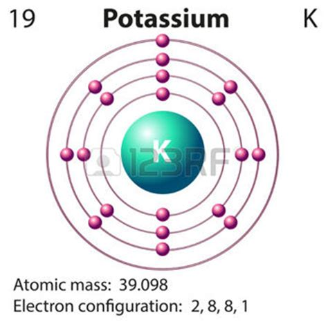 diagram of potassium atom what would be larger k parent atom or k socratic