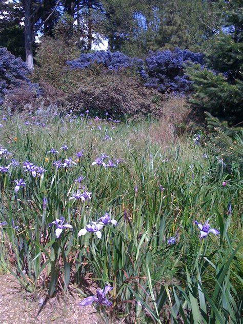 botanic garden california 301 moved permanently