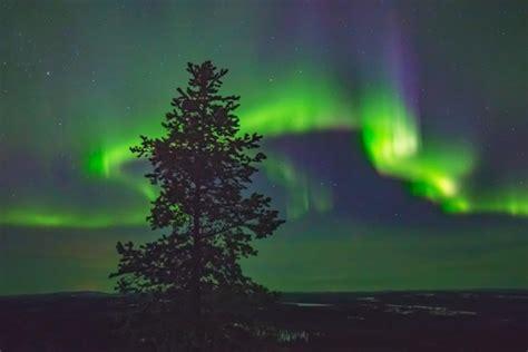 tromso northern lights tour the arctic gateway tromso northern lights tour in