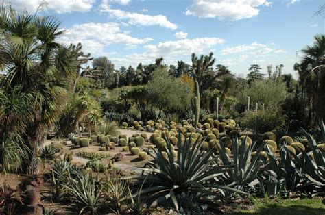 Desert Garden by 187 A Landscape By The Numbers