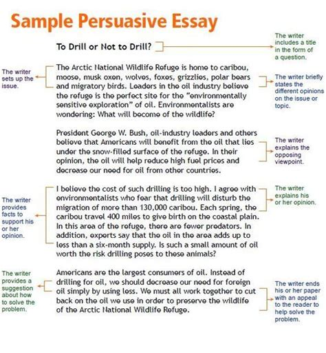 essay structure for year 7 opinion article exles for kids persuasive essay