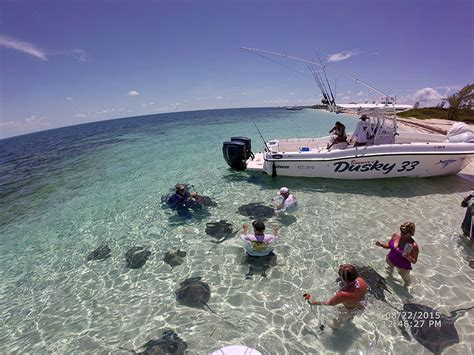 dusky boat owners virb0009 2015 dusky owners bimini bash photo gallery
