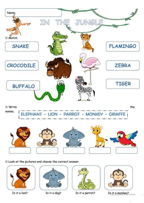 in the jungle worksheet free esl printable worksheets
