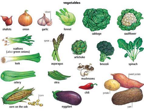 google images vegetables vegetable google search minna printmaking pinterest