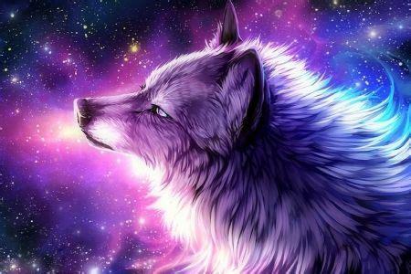 wallpaper galaxy wolf the galaxy wolf dogs wallpaper id 1828690 desktop