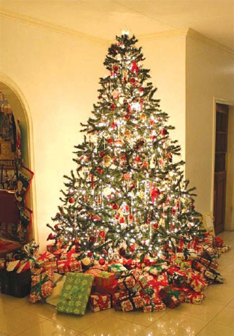 the significance and meaning of the christmas tree