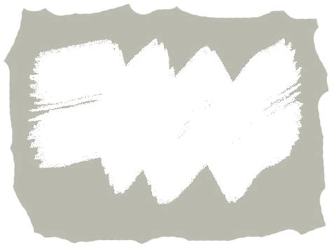 kalkanstrich gegen schimmel mit kalkfarbe gegen schimmel vorgehen naturkalk hilft