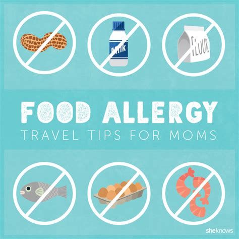 safefare chef card template if your kid has food allergies these travel tips could