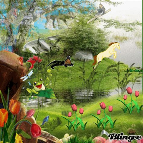 ver imagenes insolitas naturaleza naturaleza fotograf 237 a 108966601 blingee com